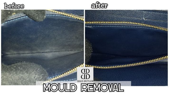 Mould Removal Bagsbutler Singapore